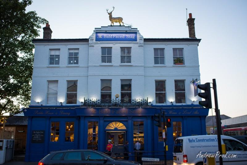 North London Photographer-7