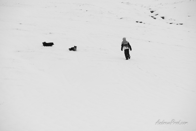 Travel Photographer Iceland-48