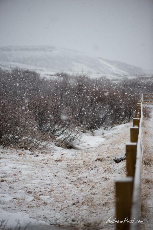 Travel Photographer Iceland-96